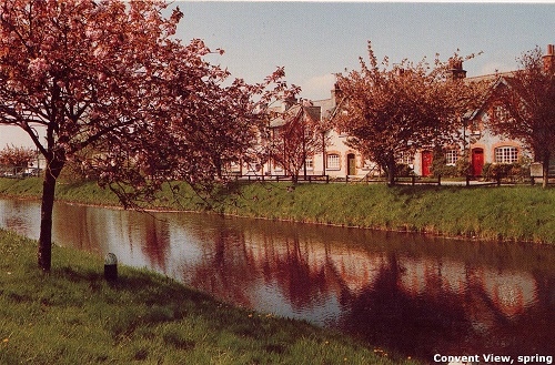 Convent View, spring